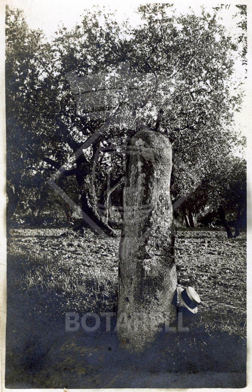 Pedra Fita, Botarell, fot S Vilaseca 1921, public 1973.jpg
